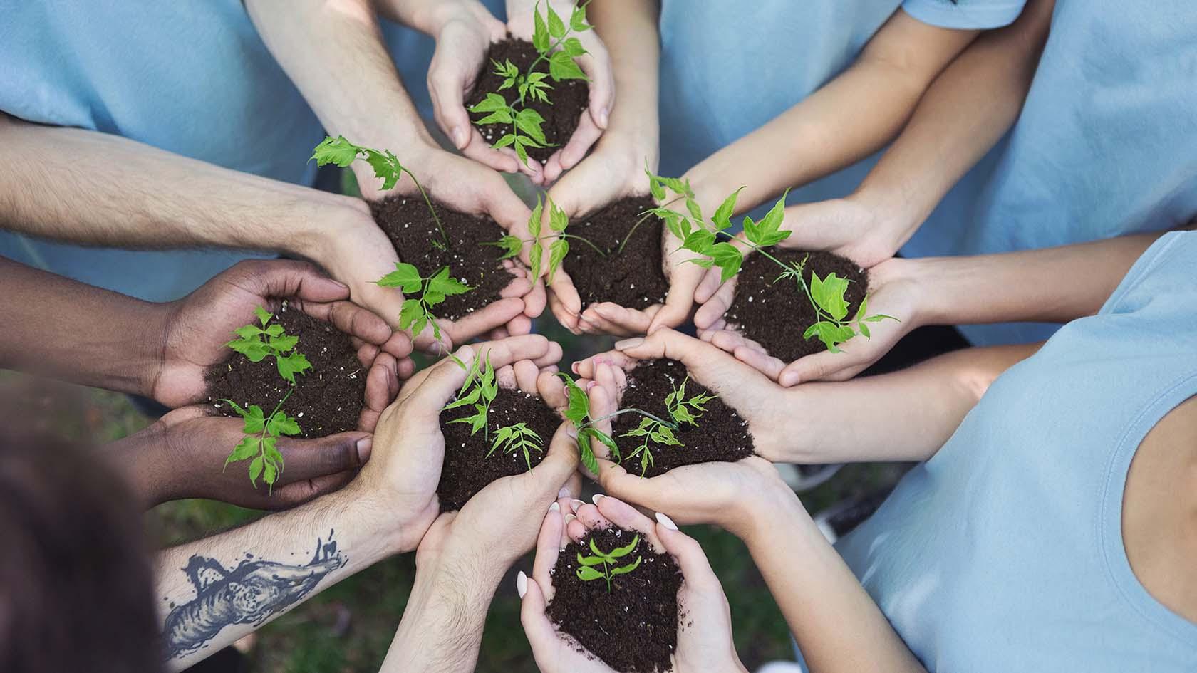 Growing Nonprofits - Fort Wayne IT Solutions
